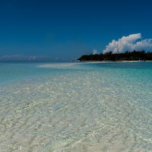 Pom Pom Island, a Macro heaven for photographers