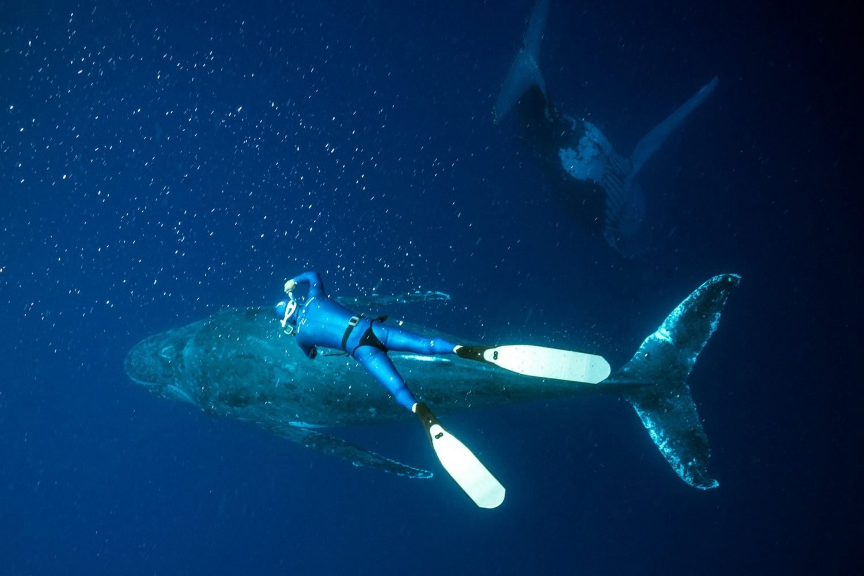 freediver photographer