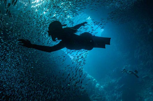 Freediving photography course