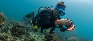 Olympus TG5 underwater photography