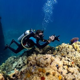 Underwater videography course