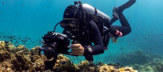 10 basic beginner tips for shooting better underwater video